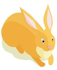 Sitting fluffy rabbit on a white background