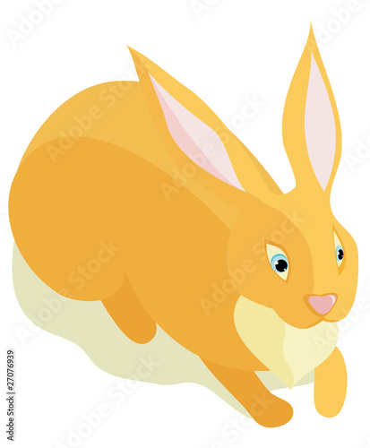 Sitting fluffy rabbit on a white background