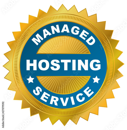 Managed Hosting Service