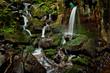 small green waterfalls