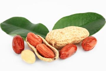 Грецкий орех с листиком на белом фоне