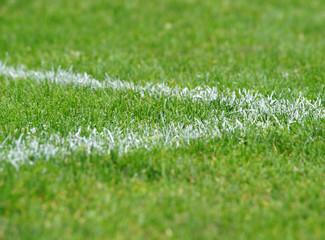 Fußball Rasen Ecke rechts - Soccer Pitch Detail