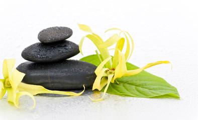 Galets zen et fleur d'Ylang-ylang