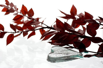 Heart shape ice and red leafs
