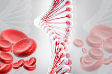 DNA with blood cells