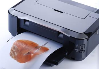 stampante cinque
