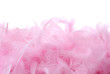 Pink feathers pile | Isolated