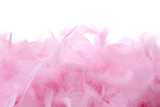 Pink feathers pile   Isolated