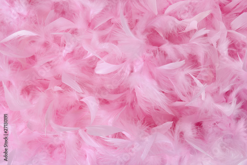 Small pink feathers in pile   Texture