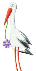 Funny stork