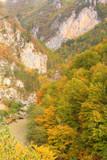 Canyon of Tara river, Montenegro poster