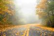 Autumn in Golden Mist