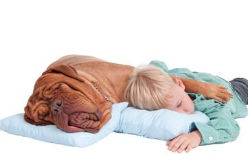 Two friends asleep