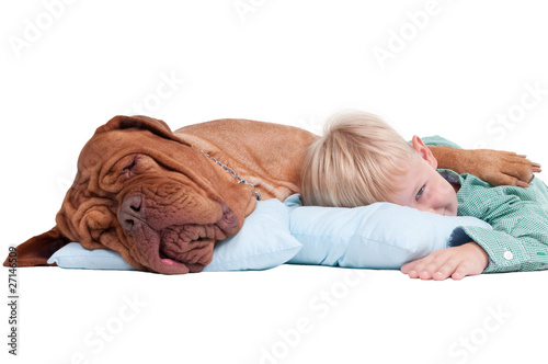 Boy with a dog on the floor