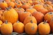 Pumpkins, Pumpkins, Pumpkins II
