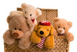 Leinwanddruck Bild - teddys in a toy chest