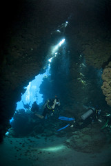 Scuba divers exploring the inside of an underwater cave.