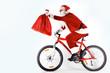 Santa with sack