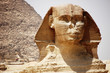 Quadro The head of the Sphinx in Giza, Egypt.