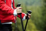 Nordic Walking hands - 27200317