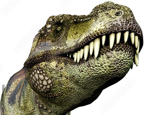 tyrannosaurus green close up - 27211952