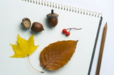 Jesenný zber