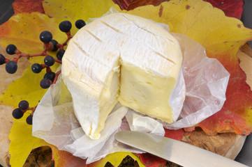 Brie auf Weinblättern