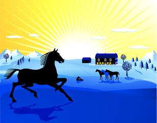 Pferde auf blau