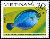 VIETNAM - CIRCA 1982 Flounder poster