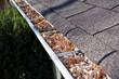 Leaves in rain gutter. - 27265909