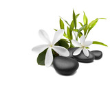 Fototapety Spa still life with white flowers