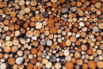 Feuerholz - Firewood