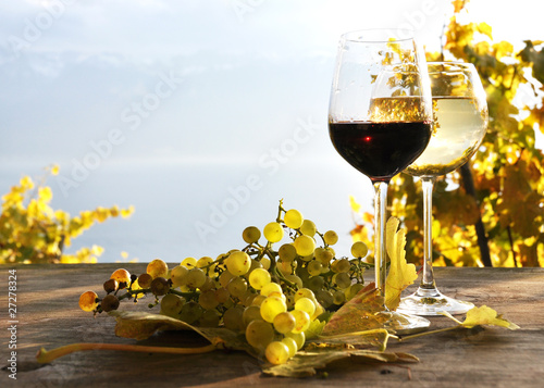 Pair of wineglasses. Lavaux region, Switzerland