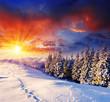 Fototapeten,hintergrund,schön,weihnachten,wolken