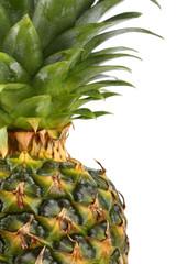 Ananas Portrait