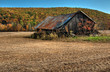 Weathered Barn