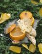 Crème de potiron au parmesan
