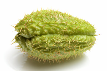 Chayote green vegetable