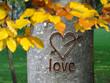 Herz in Baumrinde geritzt