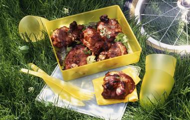 Tandoori chicken picnic