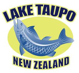 Trout fish jumping side lake taupo new zealand