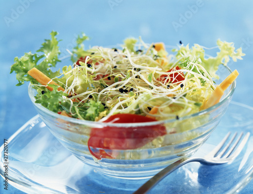 Different types of sprouts salad