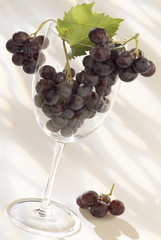 bunch of grapes in wine glass