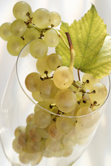 bunch of white grapes in wine glass