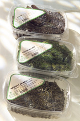 seaweed in plastic cartons