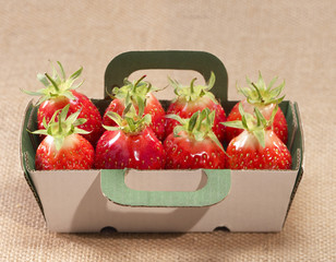 Punnet of gariguette strawberries