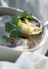 Shitaké soup with ginger and coriander