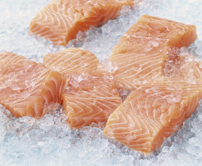 Raw pieces of salmon on ice