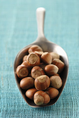 scoopful of hazelnuts