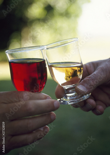 toasting glasses of red and white wine